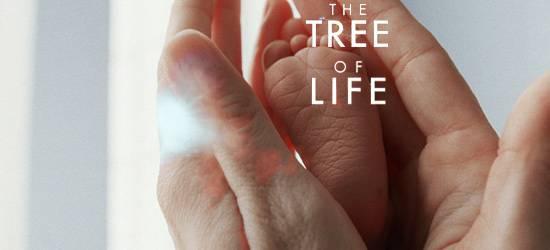 """Immagine del film """"Tree of life"""": un piedino di un neonato nelle mani di un adulto"""