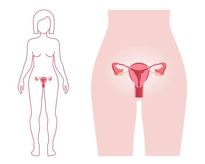 prima mestruazione