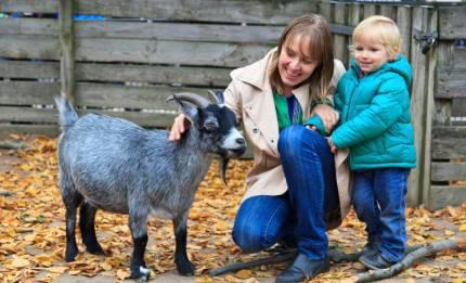 Famiglia in fattoria didattica