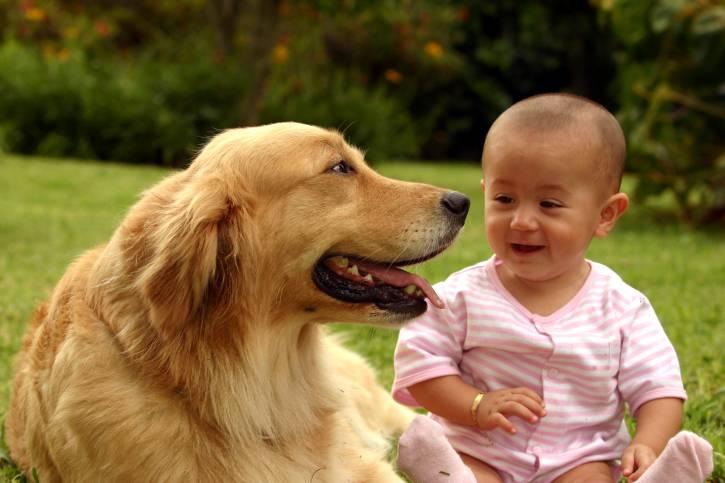 bambino-cane-parco