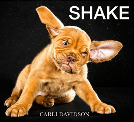 cane shake