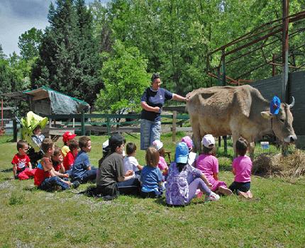 bambini a lezione nella fattoria didattica