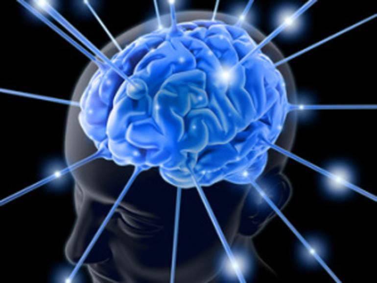 studi sul cervello