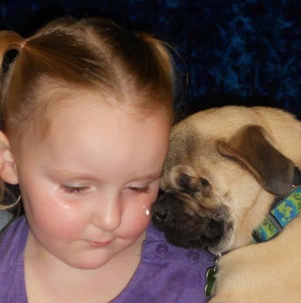 Un cane cieco consola i bambini vittime di abusi. Ecco come ci riesce! FOTO)