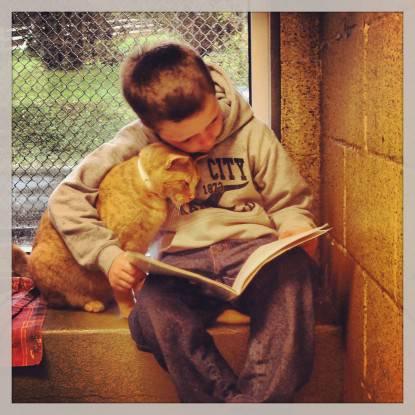 Un bambino legge al gatto
