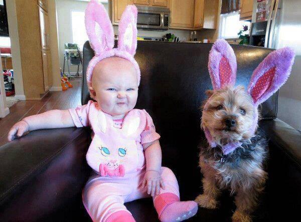bimba e cane orecchi coniglio