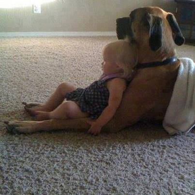 bimba appoggiata al cane
