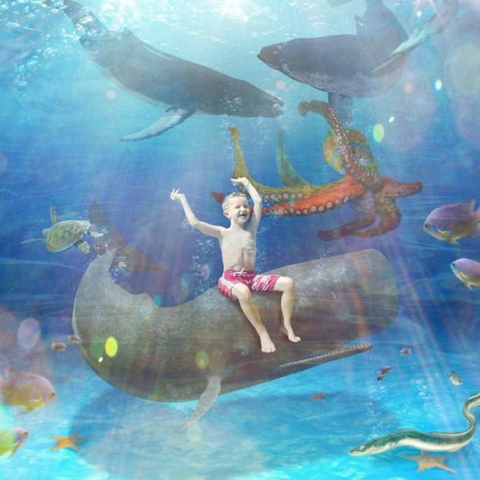 bimbo su una balena nell oceano