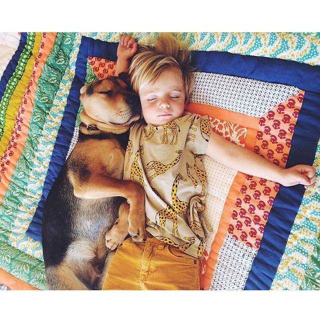 bambino e cagnolino insieme