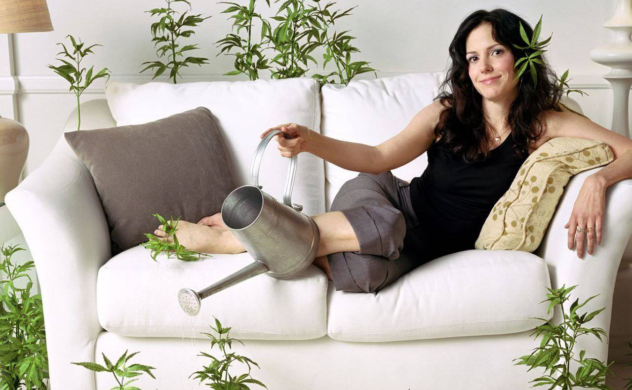 Weed Mary Louise Parker