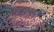 Race-for-the-cure partenza
