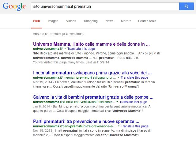 ricerca google su sito
