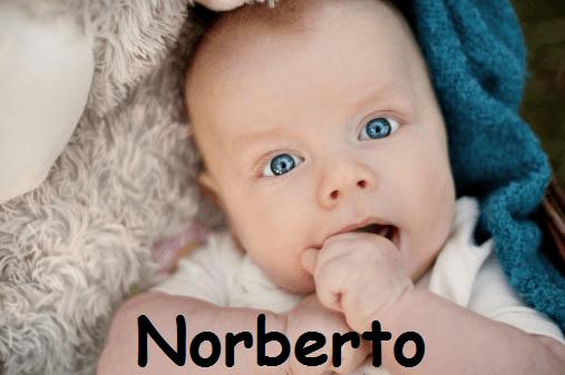 Nomi, significati, onomastici: oggi festeggiamo Norberto