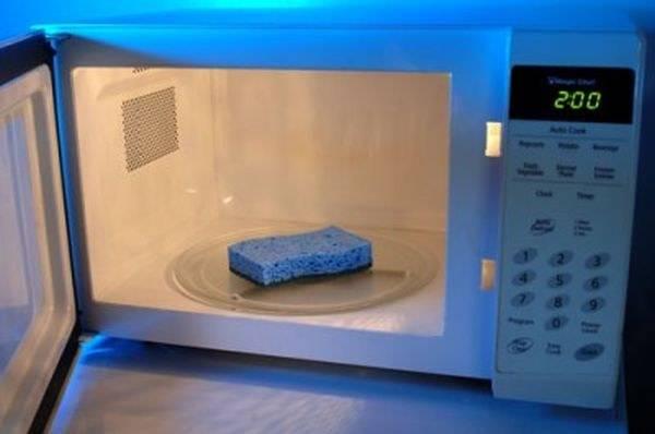 spugna per piatti nel microonde