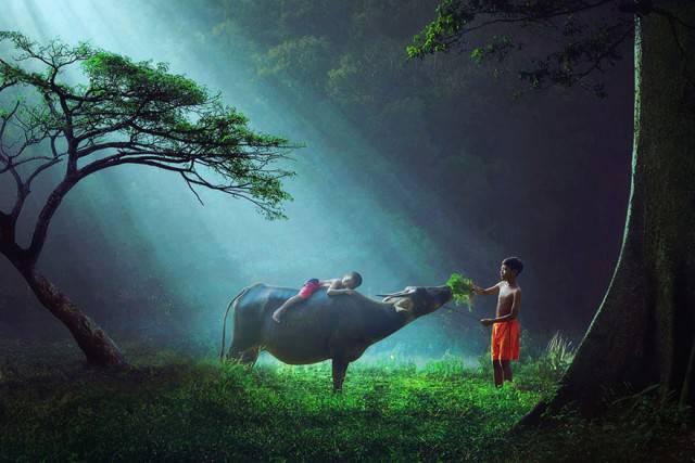 bimbi in indonesia