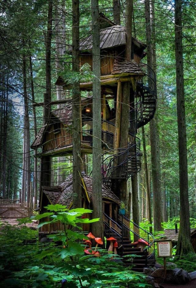 casa sull albero su più pian