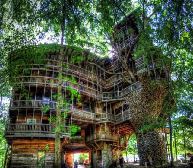 casa sugli alberi crossvile