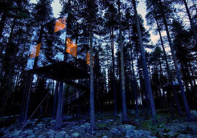 casa illuminata sull albero