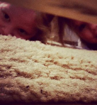bimbo spia mamma