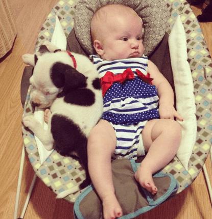 neonato e cane