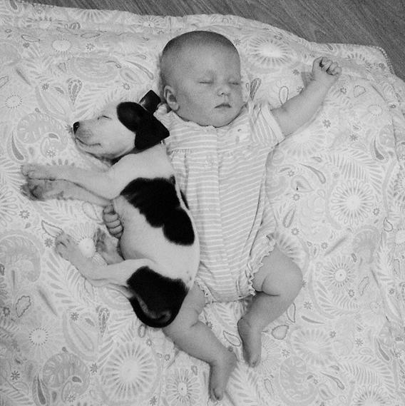 neonato e cagnolino sdraiati