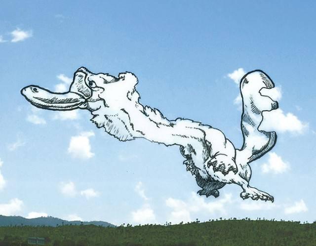 animale nuvola