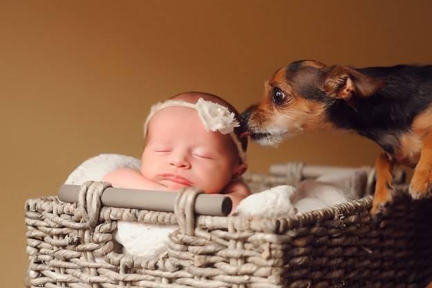 neonata con cane