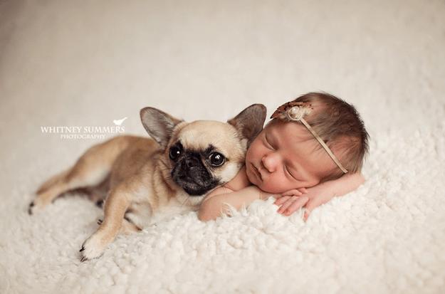 bimba e cagnolino