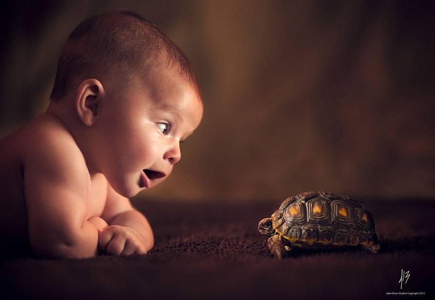 bambini e animali2