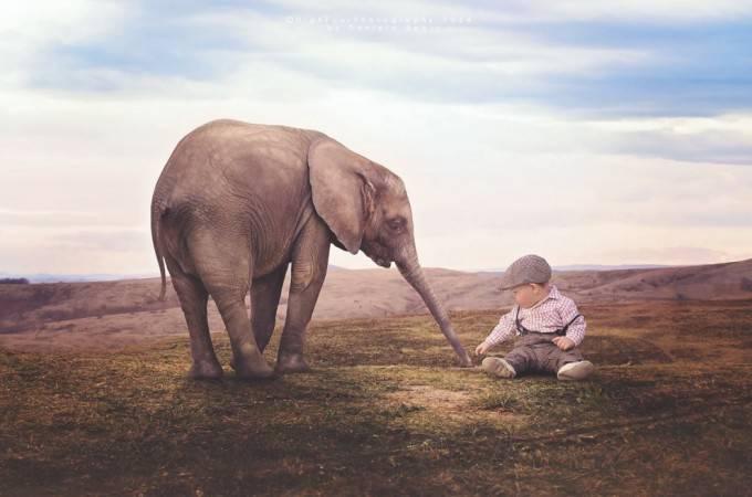 elefante e bimbo