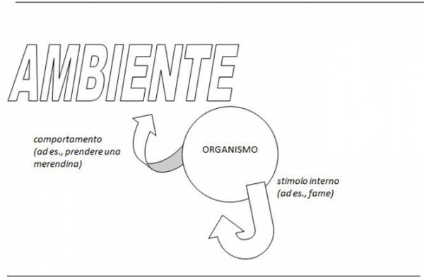 schema comportamento e ambiente 2