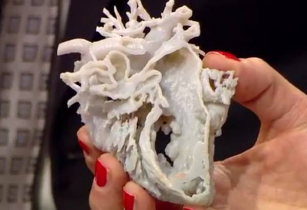 cuore stampante 3D