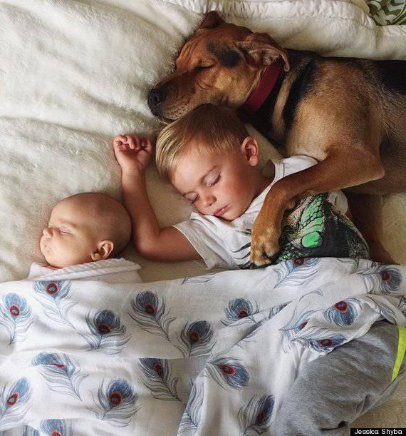 bambini e cane insieme