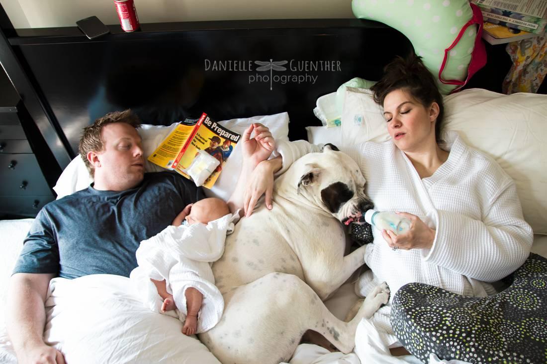 coppia con cani e bimbo