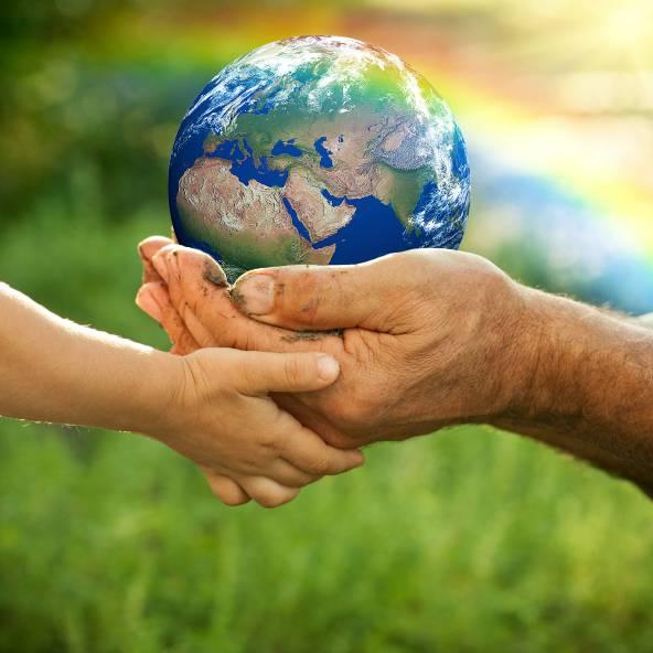 """Scuola:""""l'educazione ambientale"""" diventa materia obbligatoria"""