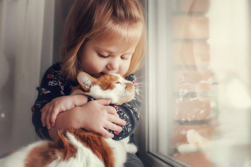 bambina animale domestico