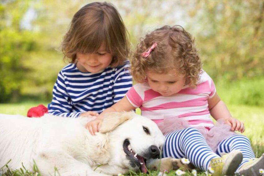 bambini carezzano un cane