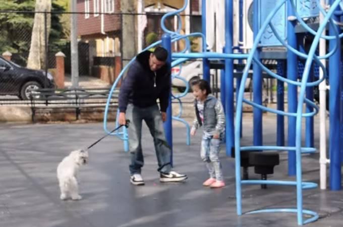 ragazzo mostra cucciolo a una bambina