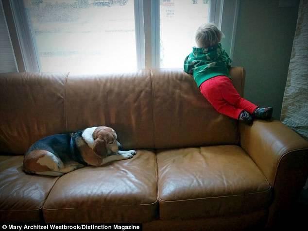 Un bambino di 3 anni scrive al suo cane morto e riceve una toccante risposta (FOTO)