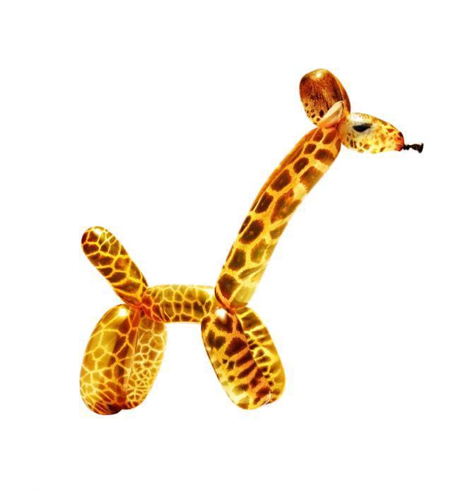 giraffa palloncini