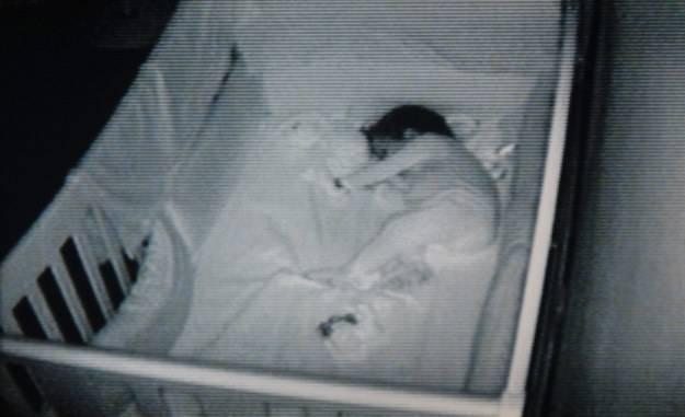 neonato