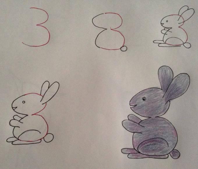 coniglio numeri