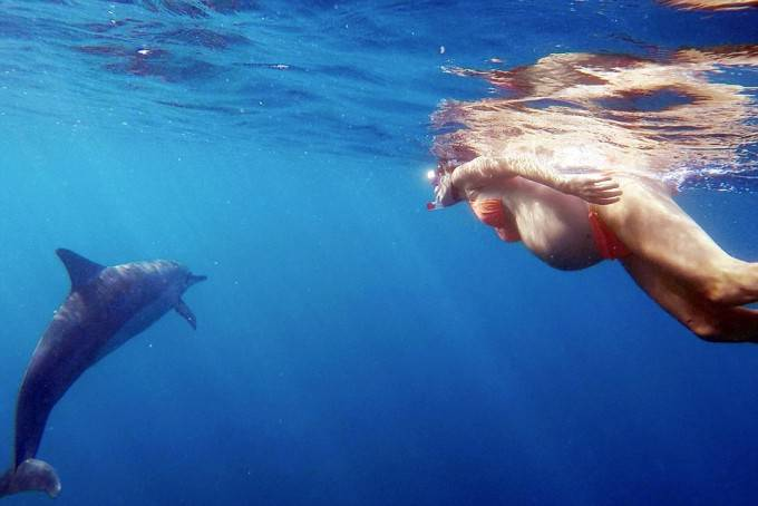 mamma vuole partorire con i delfini