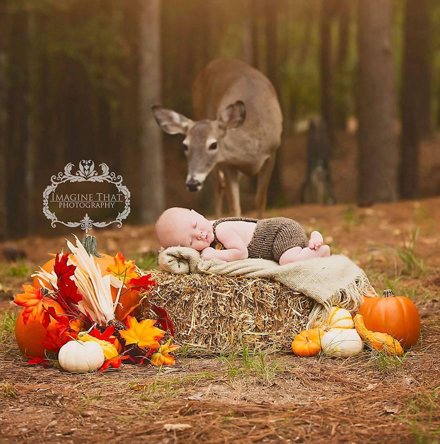 cerbiatta e bambino