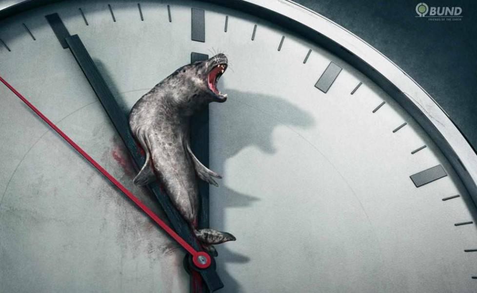 pubblicità foca