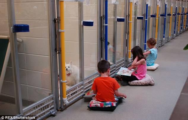 bambini leggono ai cani