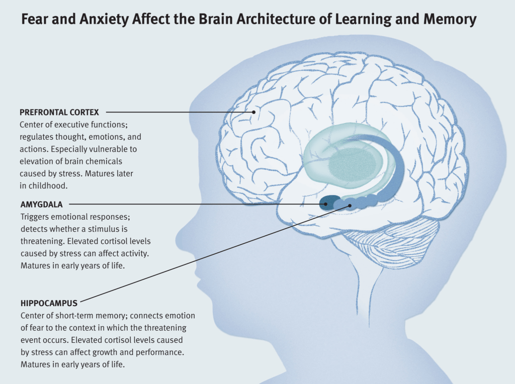 persistent-fear-and-anxiety-can-affect-young-childrens-learning-and-development-1024x764