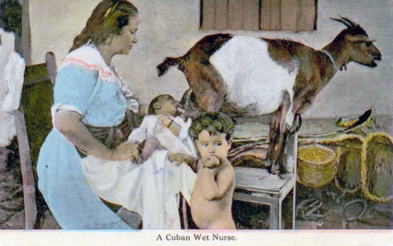 storia dell'allattamento