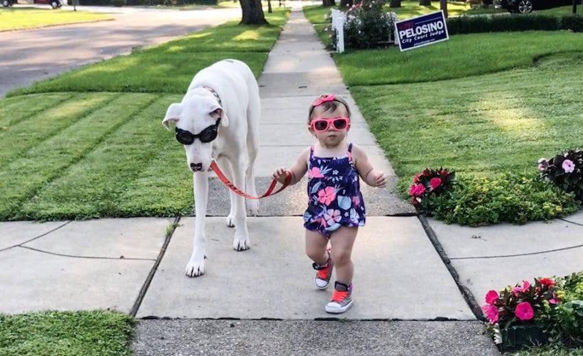 la bambina e il cane