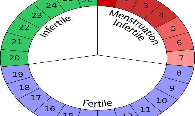esempio dieta per rimanere incinta